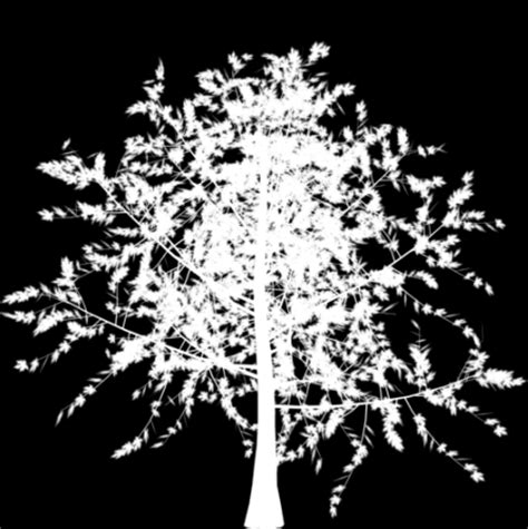 3ds Max Alpha Channel White Outline by Alpha Channel Tree Images