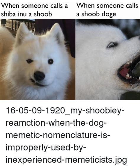 Shiba Inu Meme - funny shiba inu memes of 2017 on sizzle doges