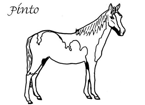 coloring pages of paint horses american coloring pages memes