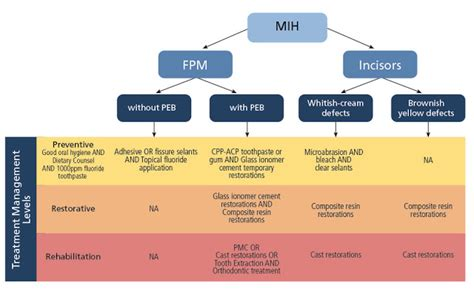 Lcb 2 Ory By Flow molar incisor hypomineralization mih conservative