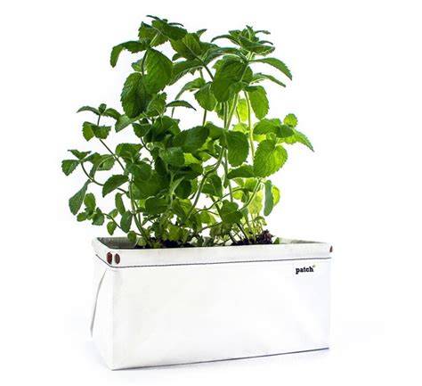 savings on self watering indoor herb garden planter space saving collapsable self watering planter urban gardens
