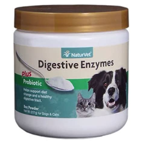 digestive enzymes for dogs naturvet digestive enzymes probiotics for dogs cats 8 oz powder