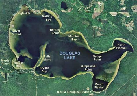 douglas lake bass boat rentals pontoon boat rentals douglas lake michigan