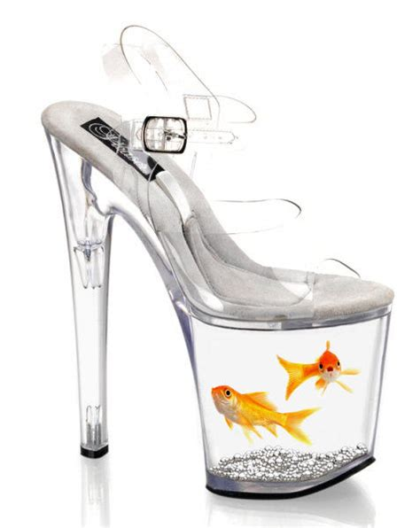 goldfish in shoe by marshmallowinvader on deviantart