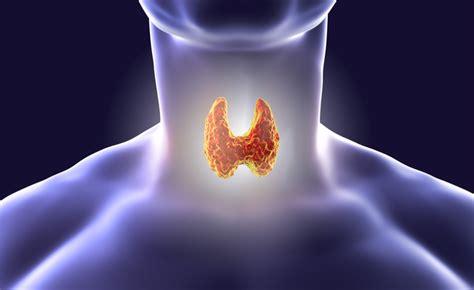alimentazione per tiroide tiroide quali sono i cibi da scegliere pazienti it