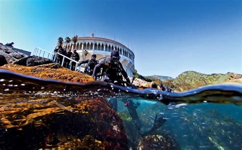 long island casino boat alert diver catalina island