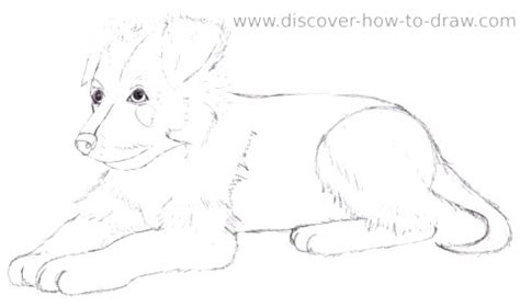 how to draw a german shepherd puppy anime german shepherd drawing photo happy heaven