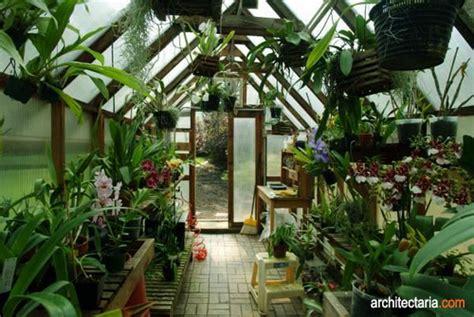Berkebun 26 Jenis Tanaman cipta amalia bangun jenis greenhouse serta tips berkebun menanam dan memelihara tanaman dalam