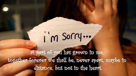 Apology Letter Wrong Price Quote i m sorry quotes apology quotes lovequotesmessages