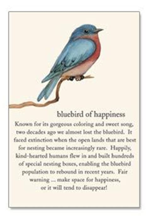 What Is The Meaning Of Backyard by Bluebird Of Happiness Quotes Quotesgram