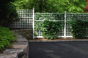 trellis for fencing trellis privacy fence fences