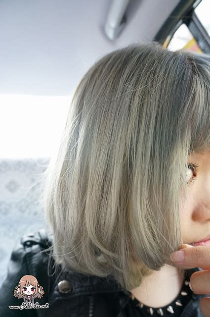 Jual Schwarzkopf Freshlight Berry Ash review freshlight foam hair dye in berry ash stella
