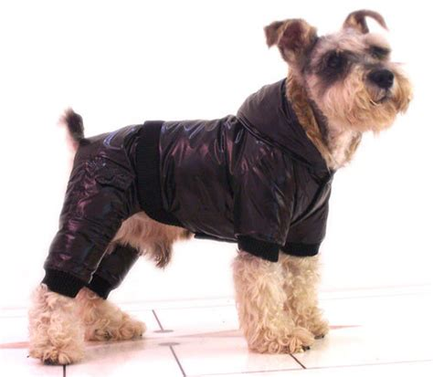 winter jackets for dogs china winter coats wj 32 china winter coats winter coats for dogs