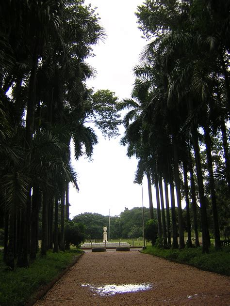 Acharya Jagadish Chandra Bose Indian Botanic Garden Botanical Garden Of India