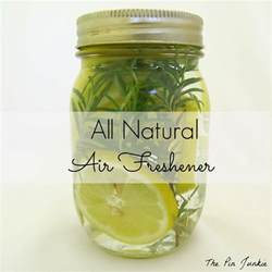 Organic Home Air Freshener The Pin Junkie All Air Freshener