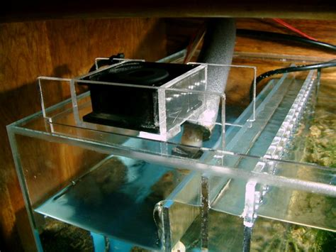 best cooling fan for aquarium cooling with fans melev s reef