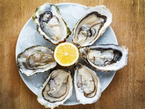 Oyster Health 8 wonderful benefits of oysters organic facts