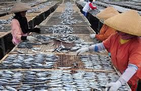 daftar ukm ikan asin  phpt muara angke jakarta utara