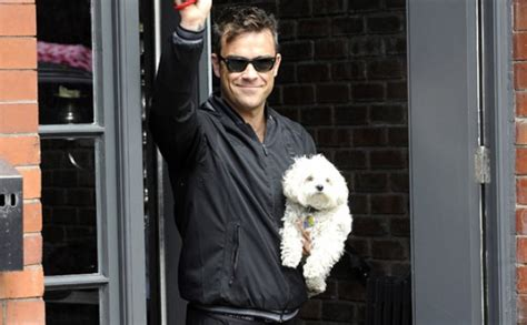 williams dogs and their dogs robbie williams goodtoknow