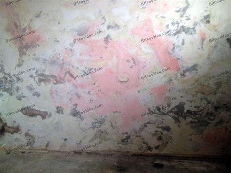 Mur Sous Sol Humide by Humidit 233 Mur Sous Sol Bande Transporteuse Caoutchouc