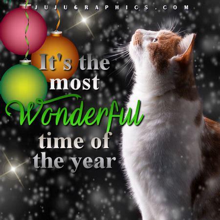 wonderful time   year jujugraphics