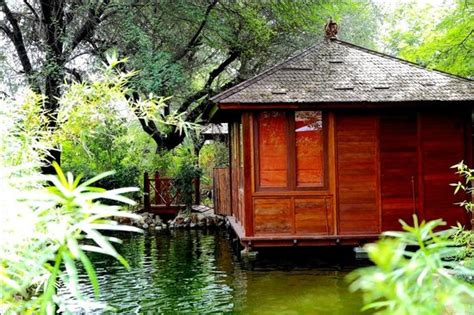 Treehouse Cottages Near Jaipur by View From A Tree Cottage Picture Of The Tree House