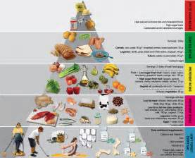 the bariatric food pyramid in case you misssed this