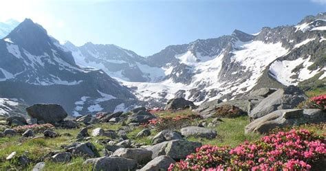appartamenti in valle aurina 15 best ahrntal valle aurina images on