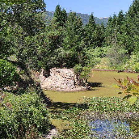 Quarry Hill Botanical Garden Quarryhill Botanical Garden Glen All You Need To