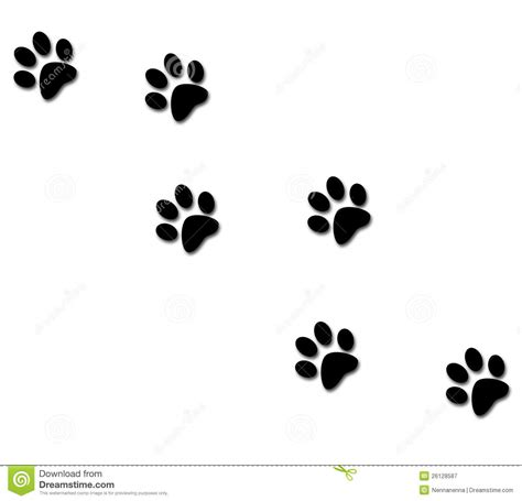 paw tracks stock illustration illustration of hunting