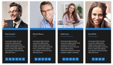 Our Team Showcase Pro Wordpress Staff Team Management Plugin Our Team Website Template