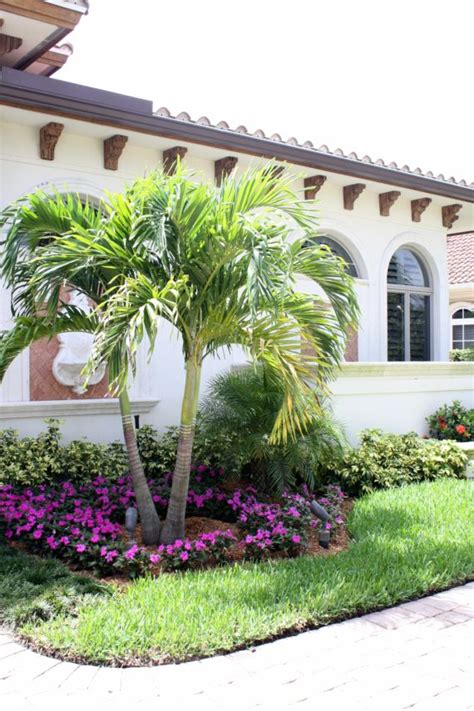 Landscaping Ideas With Palm Trees 25 Best Ideas About Palm Trees Landscaping On