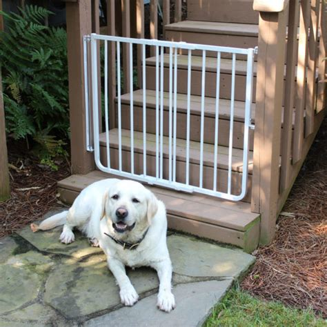 gates for dogs in house gates for dogs in house 28 images arch pet gates by states ebay withjenny pet