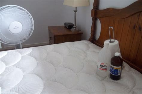How Do You Get Stains A Mattress by How To Clean Remove Urine From A Mattress Reviews