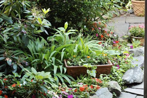 Exceptionnel Amenagement Jardin De Ville #2: jardin-ville-ombre.jpg