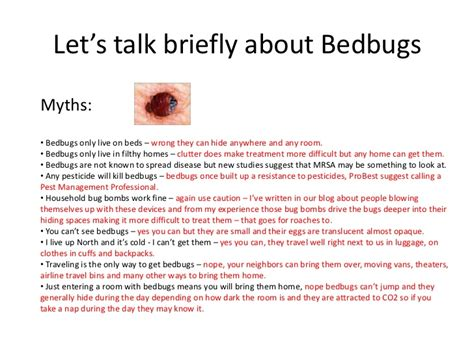 can bed bugs live in carpet bedbugs in carpet floor matttroy