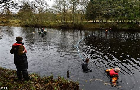 Thames River Hatchery | fish on the tyne river that was once one of england s