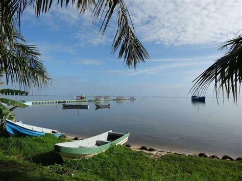 glass bottom boat tours cocoa beach fl 246 best images about mi honduras on pinterest santa
