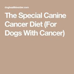 the cancer cure diet for dogs using the ketogenic diet to prevent treat and cure cancer in your furriest family member books cancer cancer and kindle on