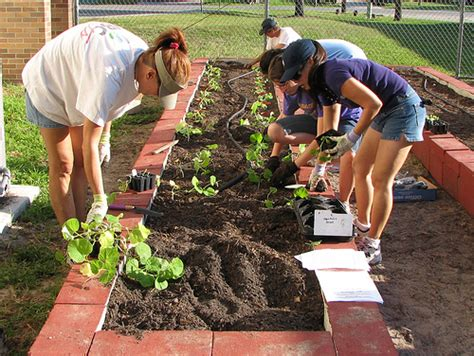 google basic gardening find out if your church is ready for a community garden