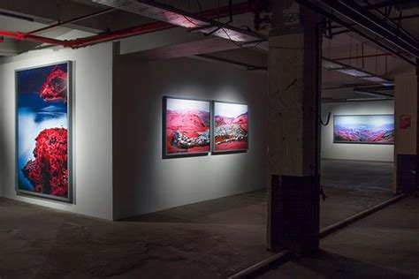Richards On Display by Richard Mosse S The Enclave On Display In