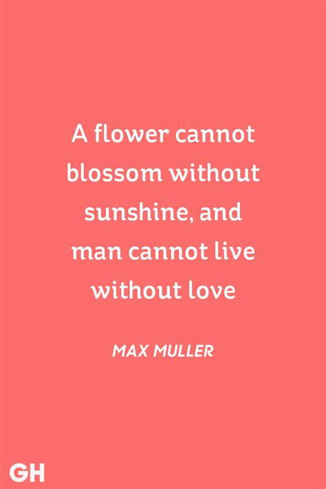 valentines quotes 30 s day quotes best quotes