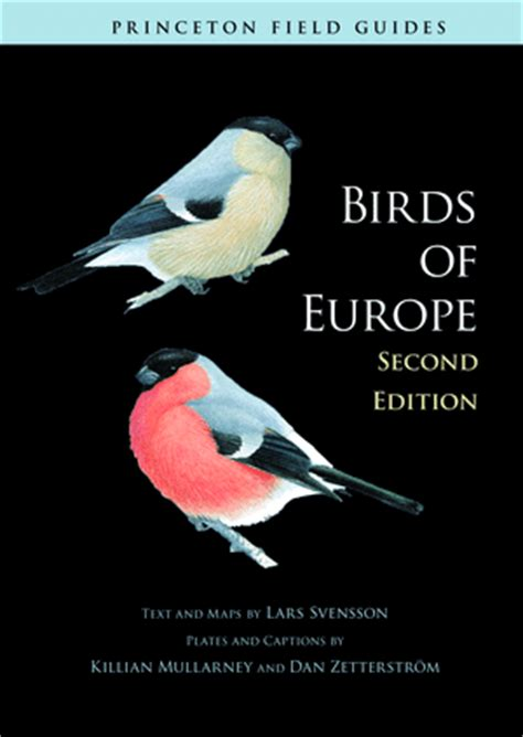 the birdchaser best bird field guide ever again