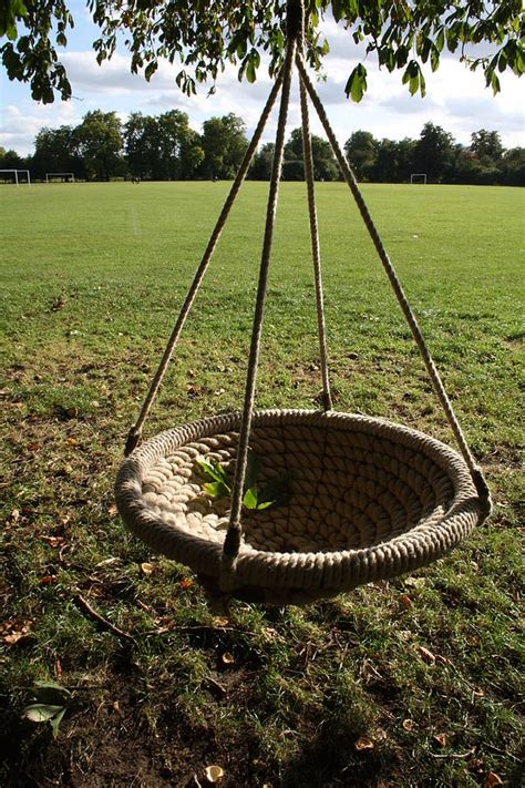 Round Birds Nest Swing By Plants Delivered