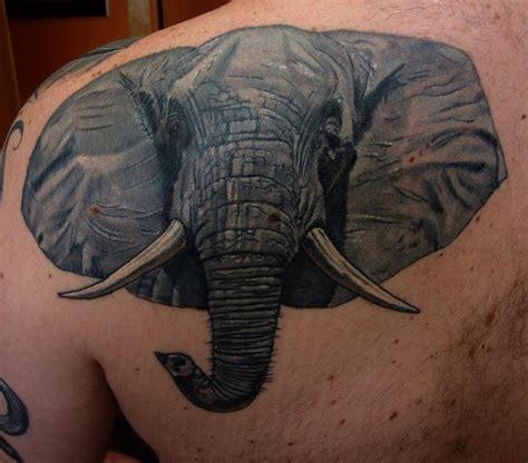 elephant tattoo portrait elephant portrait by larry brogan tattoonow