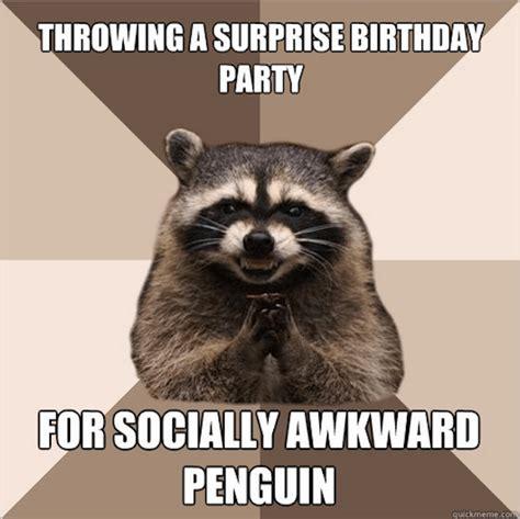 Raccoon Memes - 18 evil plotting raccoon memes that will make you