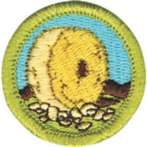 boy scout troop  mbs information