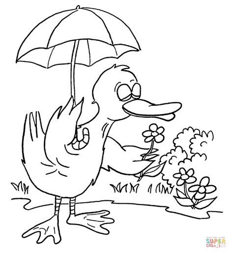coloring page duck with umbrella duck with umbrella coloring page free printable coloring