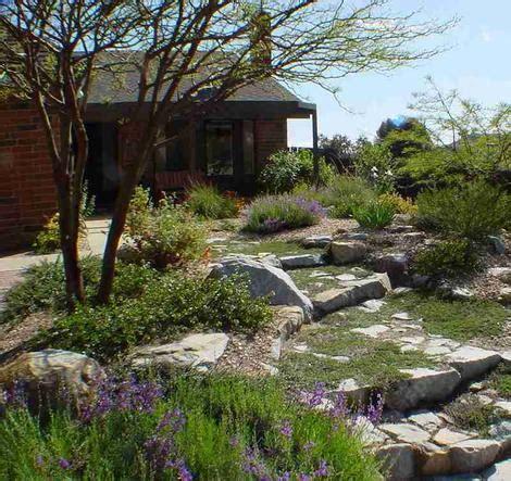 Rubin Garden Of by California Plant Garden Exles