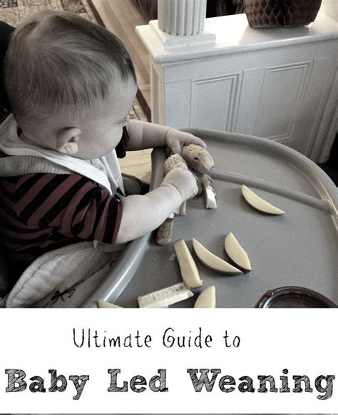 mumcentral baby led weaning exles ultimate guide to baby led weaning a simple approach to solid food introduction how this